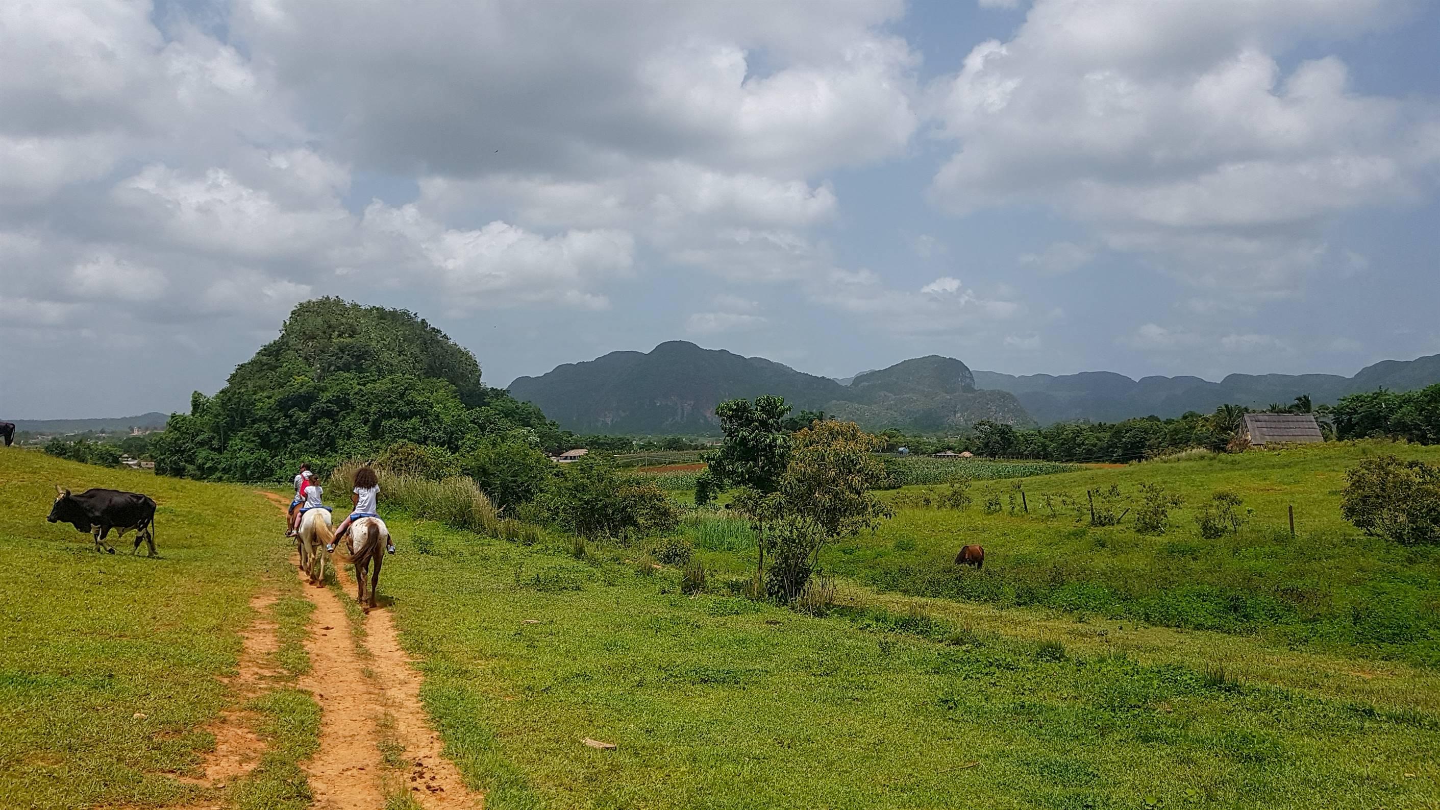 Les mogotes - Valléee de Vinales - CUBA