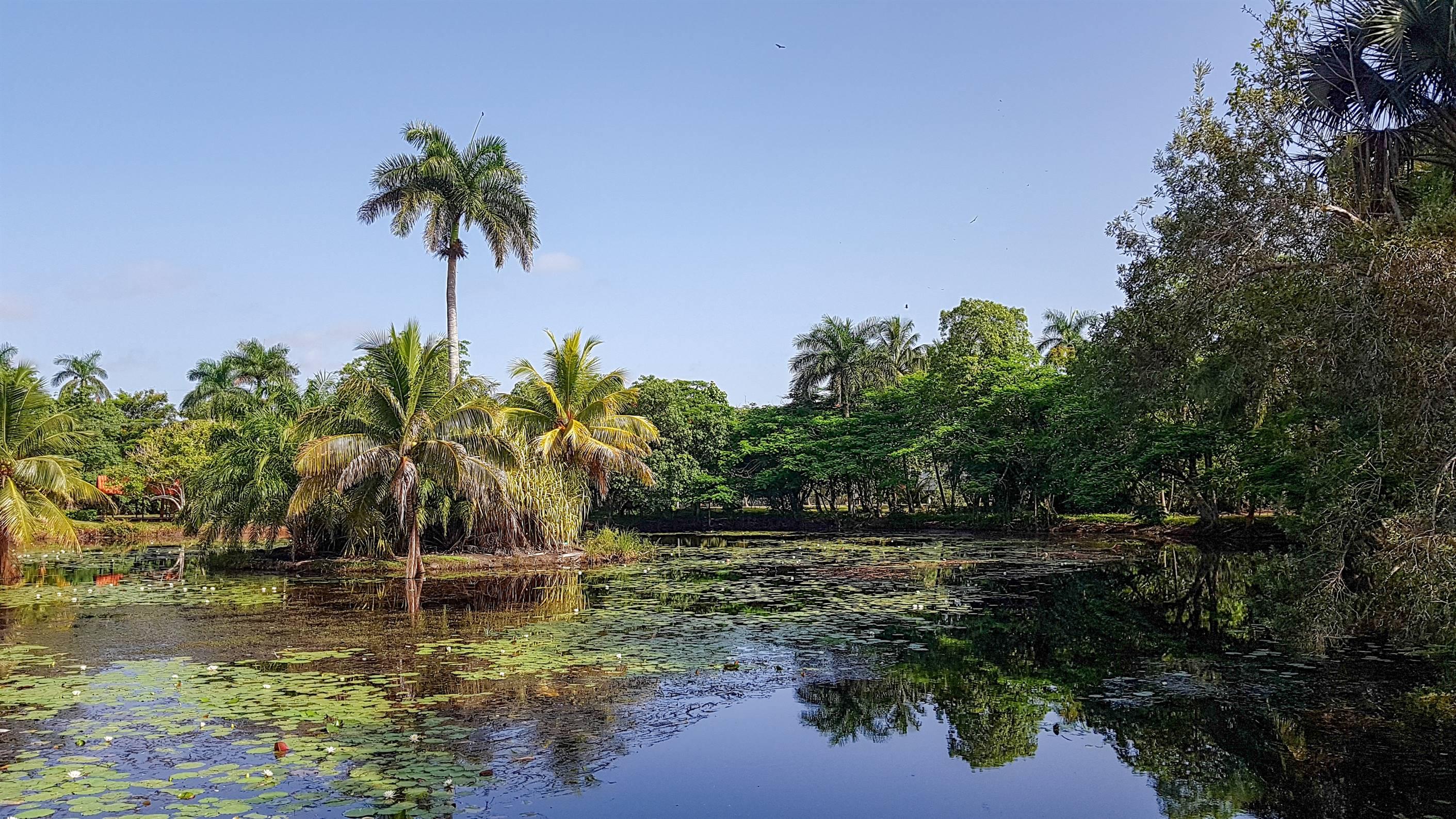 Ferme aux Crocodiles - Playa Larga - CUBA