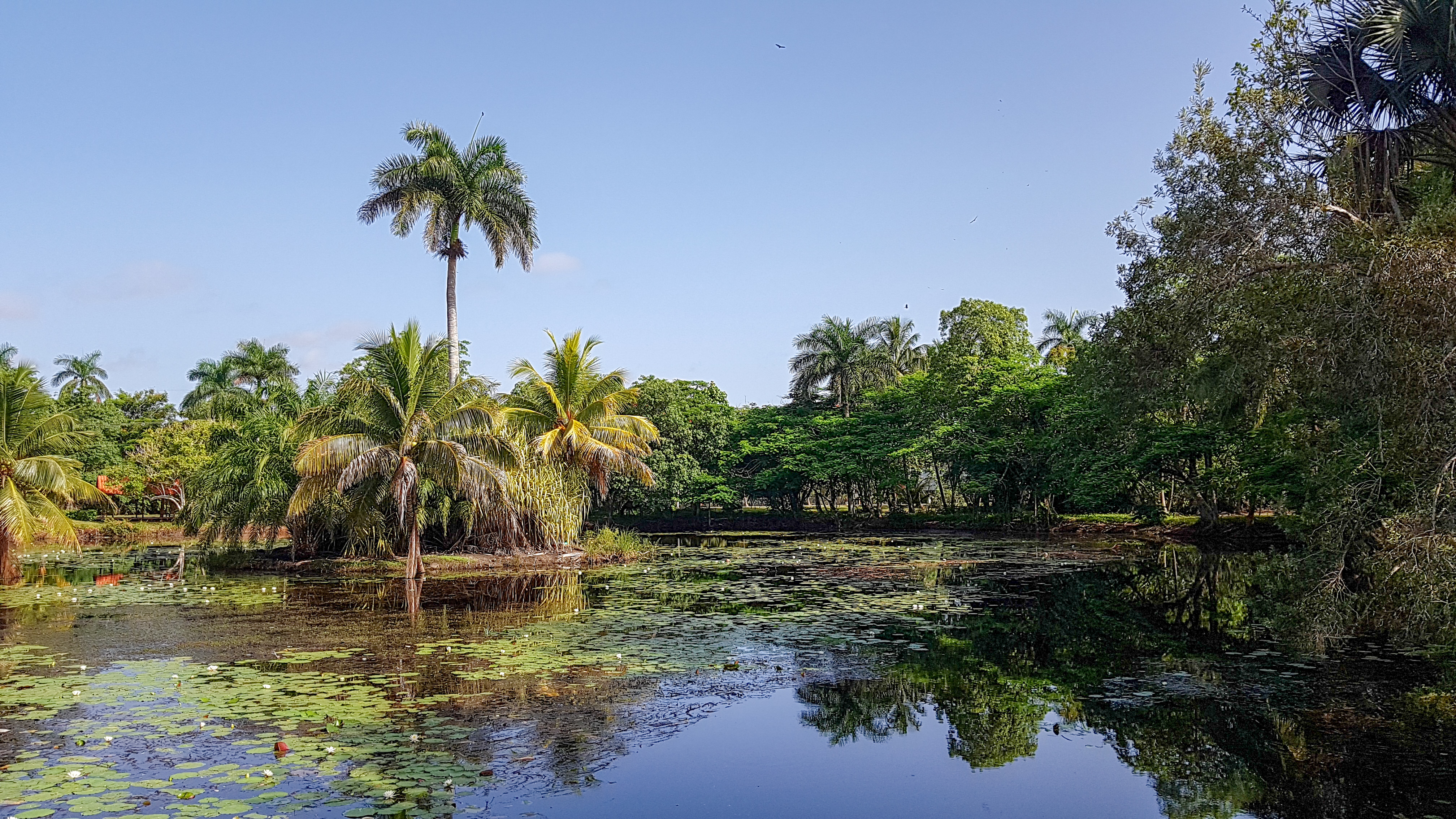 La ferme aux crocodiles, Playa Larga, Cuba