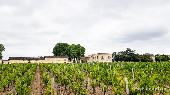 Chateau Marquis de Terme
