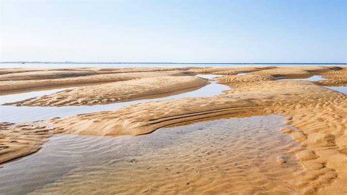 Le plateau de Cordouan à marée basse